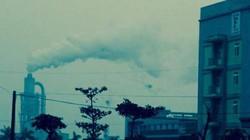 """Công ty gỗ MDF Quảng Trị nộp thuế 86 triệu đồng, phả """"khói trắng""""… mù"""