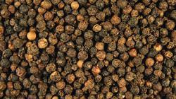 Giá nông sản hôm nay 4.8: Hồ tiêu tăng 6.000 đ/kg, cà phê giảm nhẹ