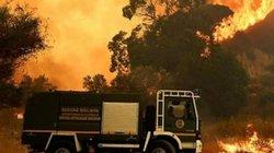 Lính cứu hỏa tự tạo hỏa hoạn để kiếm thêm thu nhập ở Italy
