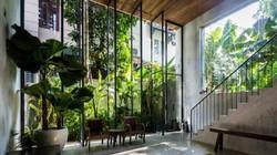 Sốt với kiến trúc nhà ống kiểu Nhật giữa Sài Gòn