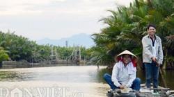 Quảng Ngãi: Cảnh báo việc phá rừng dừa nước làm nhà máy giấy