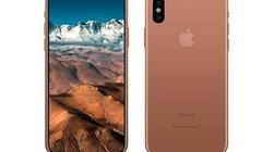 iPhone 8 sẽ có tùy chọn màu Vàng Blush
