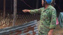 Đắk Lắk: Công an vào cuộc vẫn chưa tiêu hủy được ổ dịch cúm gia cầm