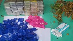 Mật phục bắt kẻ vận chuyển 59 bánh heroin và 36.000 viên ma túy