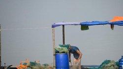 Quảng Ninh công bố đường dây nóng về vi phạm khai thác thủy sản