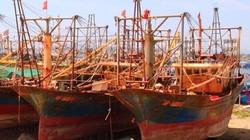 Công ty Đại Nguyên Dương dọa kiện Bộ NNPTNT và 5 ngư dân vụ tàu 67