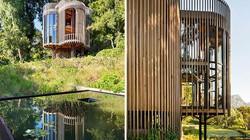 Độc đáo căn nhà gỗ tròn xoe nằm giữa rừng cây