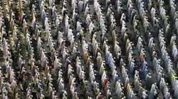 Ảnh: 2 triệu người Hồi giáo đổ về kín đặc thánh địa Mecca