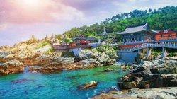 Bật mí kinh nghiệm du lịch Hàn Quốc từ A tới Z