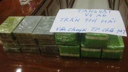 Thanh Hóa: Bắt giữ xe khách chở 15 bánh heroin và 5kg ma túy đá