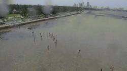 Nước bị siêu bão hút lên trời, biển Florida thành bãi cạn