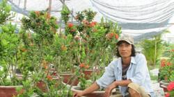 """Làm giàu ở nông thôn: Thu gần 20 triệu/tháng từ trồng hoa ở dự án """"treo"""""""