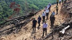 Bí thư Bình Định truy vấn lãnh đạo xã nơi có 43ha rừng bị xóa sổ