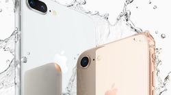 iPhone 8 và iPhone 8 Plus sẽ bán chậm vì iPhone X lên kệ muộn