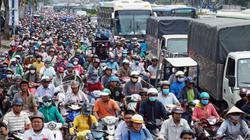 """Xóa sổ """"chợ"""" sinh vật cảnh lớn nhất SG, giao thông tê liệt từ sáng đến trưa"""
