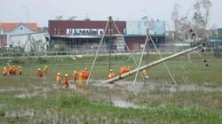 Huy động hàng trăm người sửa điện miền Trung sau bão số 10 Doksuri