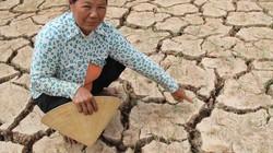 Vùng trọng điểm nông nghiệp ĐBSCL đang lâm nguy vì biến đổi khí hậu