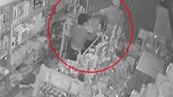 Clip: Nhóm trộm táo tợn đột nhập lúc rạng sáng