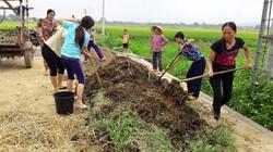 """""""Vàng đen"""" cho cây: Việt Nam lãng phí 6 triệu tấn/năm"""