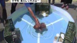 World Cup: Bạch tuộc tiên tri đúng 100% trận đấu của Nhật bị làm thịt
