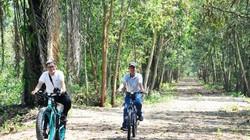 Đổi gió ở khu rừng tràm nguyên sinh cách Sài Gòn chỉ 2 giờ chạy xe