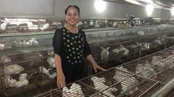 Bắc Giang: Xã Hương Vĩ quyết tâm không để nợ đọng