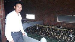 Làm giàu ở nông thôn: Nuôi 30.000 vịt bay như chim, lời nửa tỷ/năm