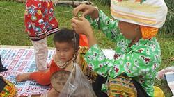 """Chợ Mẫu Sơn: """"Phát sốt"""" với trái rừng lạ, rùa nhốt lồng tre, rết độc"""