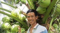 Cho bưởi da xanh xen canh dừa dứa , vườn xanh, quanh năm có tiền