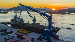 Bộ NNPTNT lên tiếng về việc nhận chìm chất nạo vét dự án 15 triệu đô