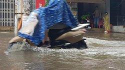 Vinh ngập nặng, đường đi sân bay, bệnh viện... chìm sâu trong nước