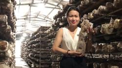 Nấm Lý tưởng đưa nấm hương tươi Sa Pa vào hệ thống siêu thị Hà Nội