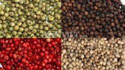 Giá nông sản hôm nay 24/7: Giá cà phê tăng nhẹ, người Việt chỉ ăn 5% hồ tiêu