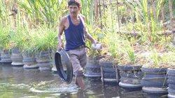 Lấy lốp xe cũ làm bồn trồng rau, kè bờ nuôi cá, hóa ra lại hay