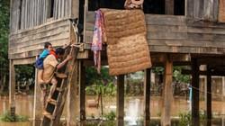 Đêm chạy lũ của người Việt ở Lào