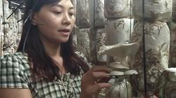 Bỏ buôn bán về trồng nấm, gái xinh phố núi bỏ túi nửa tỷ đồng/năm