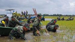 Vỡ đập thủy điện ở Lào: Nguy cơ gia tăng lũ ở Đồng bằng sông Cửu Long