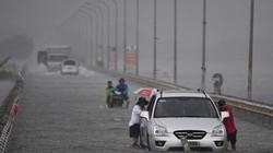 Bác tin ngoại thành Hà Nội ngập lụt do thủy điện Hoà Bình xả lũ