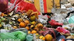 Sống trong lòng rác dưới chân cầu Long Biên