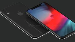 Không cần lo iPhone tăng giá, Apple vẫn tung iPhone LCD vào năm sau