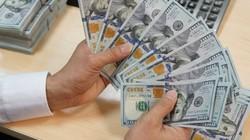 Tỷ giá ngày 10.8: Giá USD chợ đen và ngân hàng cùng hạ nhiệt