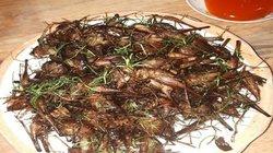 """Đặc sản côn trùng chôm chôm ở Tây Bắc """"nhìn thì ghê nhưng ăn là mê"""""""