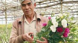 Đà Lạt: Khấm khá lên nhờ vay vốn ưu đãi để trồng hoa