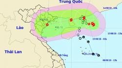 Áp thấp nhiệt đới liên tục đổi hướng, sắp mạnh lên thành bão