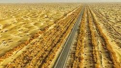 Tuyến cao tốc xây bằng cát trên sa mạc lớn nhất Trung Quốc