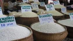 Người Thái, người Ấn giữ giống lúa như thế nào?