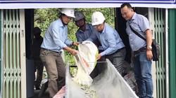Thả 16 vạn con cá giống xuống hồ thủy điện Đồng Nai