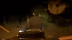 Thanh niên chạy Exciter trộm chó bị truy đuổi như phim hành động