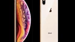 Ý tưởng iPhone XS 6,5 inch đẹp khó cưỡng, có bản màu vàng