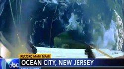 Thiếu niên Mỹ câu được cá nục heo khổng lồ phá kỷ lục